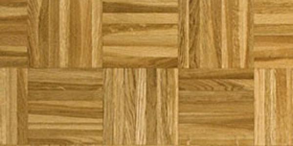 Oak aubier